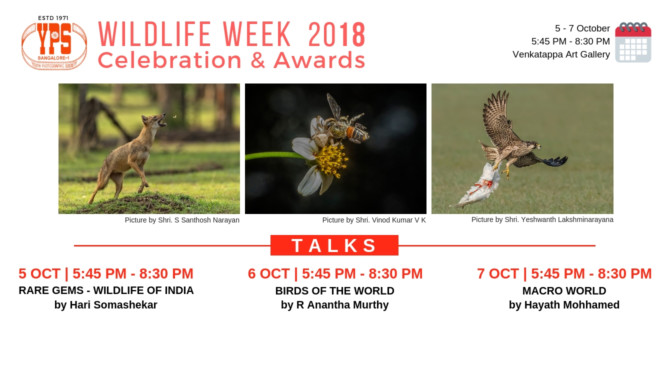 WILDLIFE WEEK CELEBRATION 2018