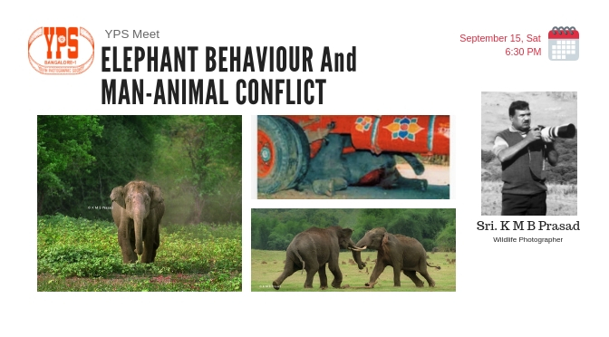 ELEPHANT BEHAVIOUR And MAN-ANIMAL CONFLICT – A Slideshow by Sri K M B Prasad