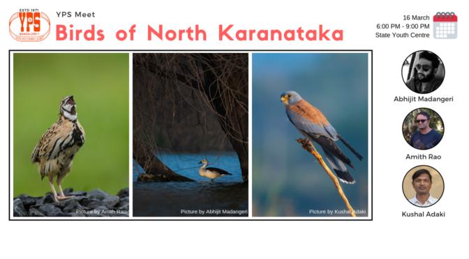 Birds of North Karnataka