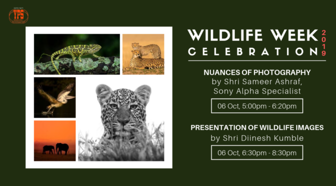 WILDLIFE WEEK CELEBRATION 2019