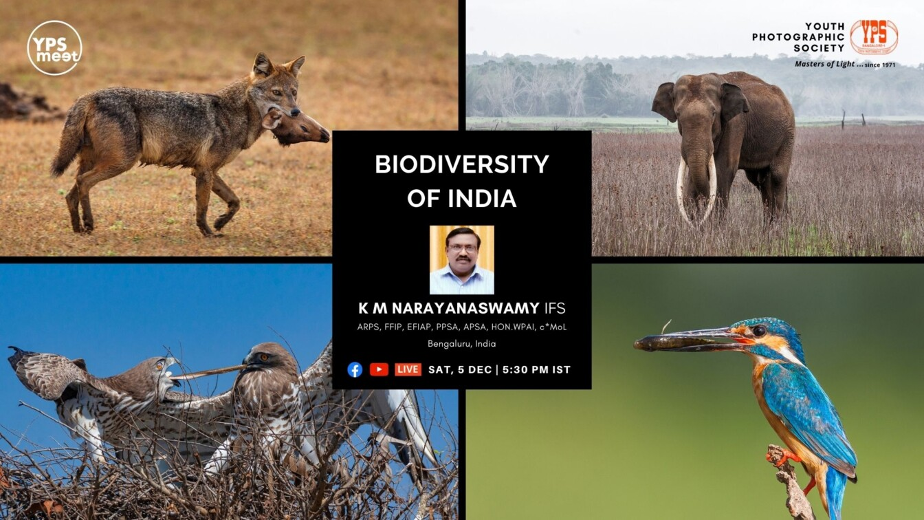 YPS Meet Biodiversity of India by Mr Narayanaswamy K M on 5 Dec at 5-30PM IST