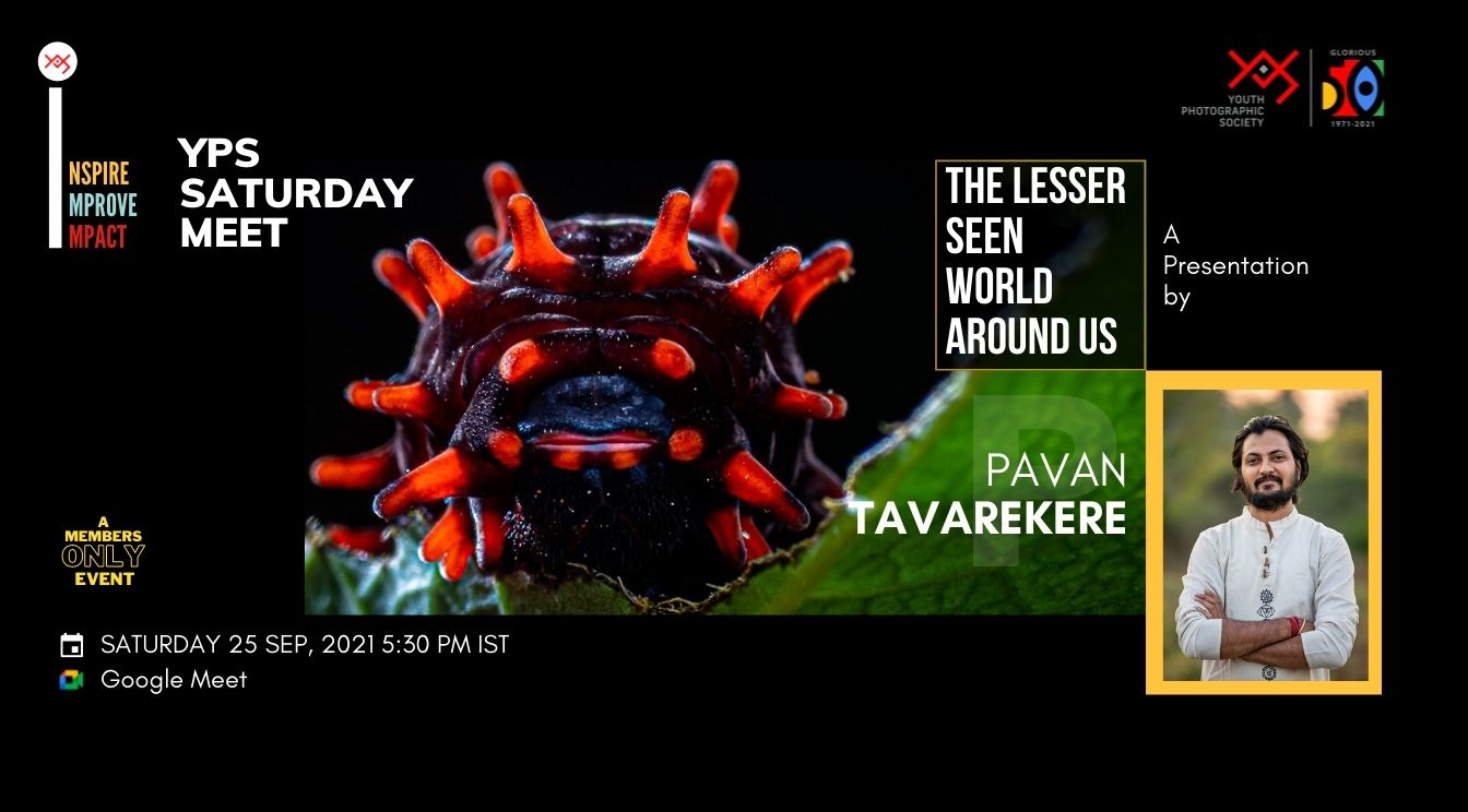 YPS Saturday Meet - The Lesser Seen World Around Us - A presentation by Pavan Tavarekere on 25 Sep at 5-30 PM IST on Google Meet
