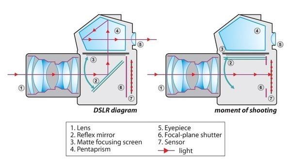 Mirror Mechanism of SLR
