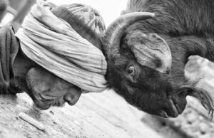 Life-of-Banaras-by-Manish-Khattry-01