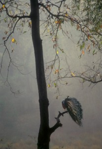 39 - Pacock in Mist