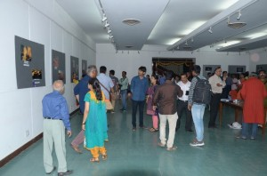 Visitors to the Exhibition
