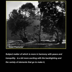 01.(06)Cool Pastures