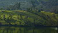 landscape-from-ooty
